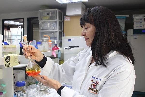 Dra. Claudia Ortiz, académica de la Facultad de Química y Biología de la Usach, quien lidera el proyecto.